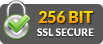 256bit ssl secured